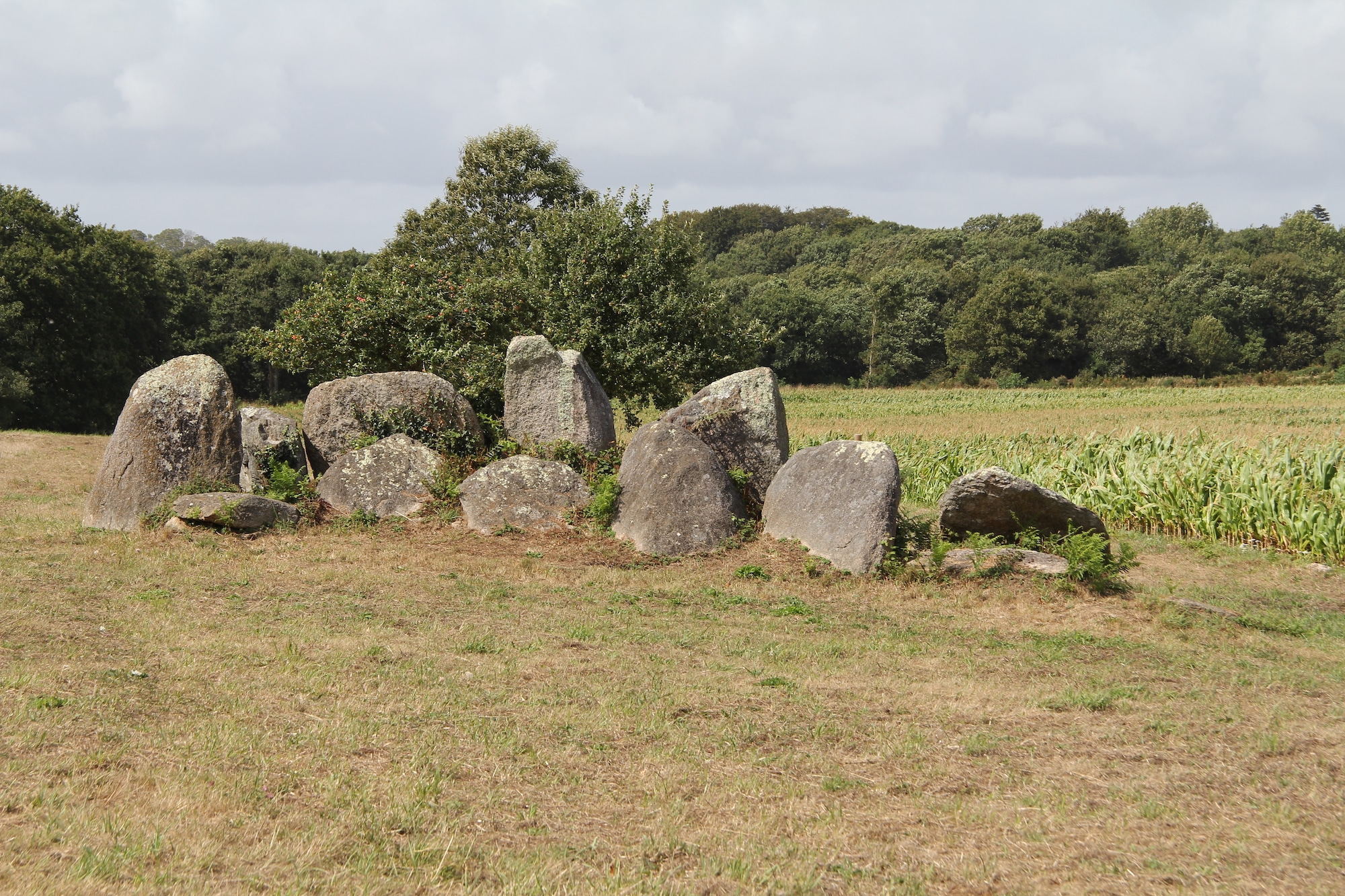 histoire de la Bretagne néolithique