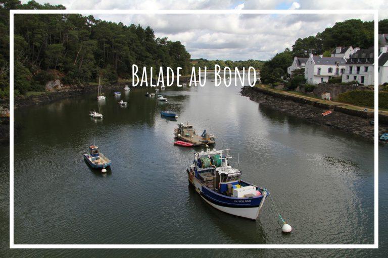 Read more about the article Le Bono, balade au bord d'une rivière morbihannaise
