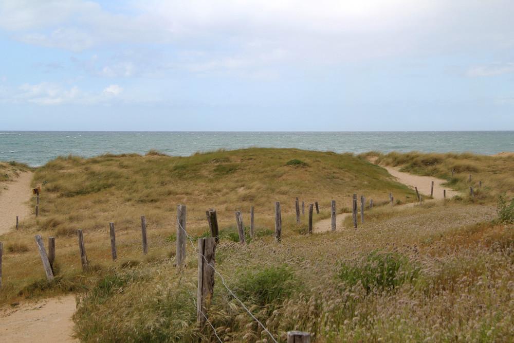 Les dunes de la plage de Longchamp